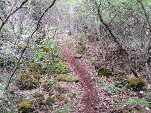 Erosión Trail