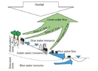 Imagen 2- Agua verde y agua azul