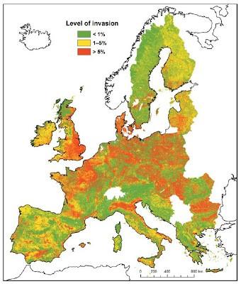 Invasion Plantas Europa