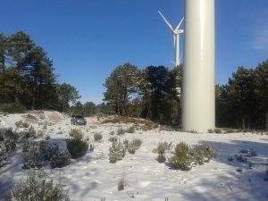 Estudio Impacto Amiental Parque Eólico IdeasMedioambientales.com