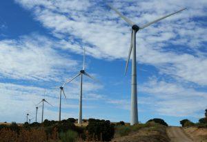 Estudio Ambiental Parque Eólico Ideasmedioambientales.com