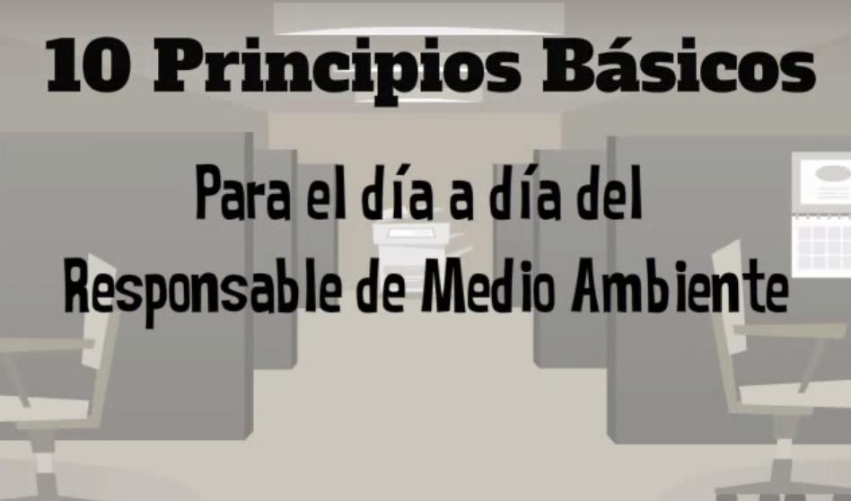 Responsable_medio_ambiente_ideas_medioambientales