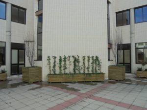 Jardín Facultad Educación Ideas Medioambientales01