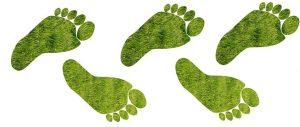 Cálculo de la huella de carbono de Ideas Medioambientales y registro.