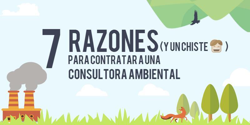 Consultor-ambiental