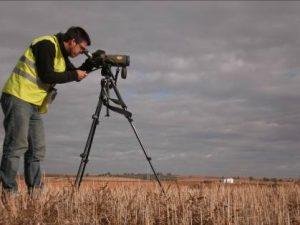 vigilancia-ambiental-ideas-medioambientales-segumiento-fauna