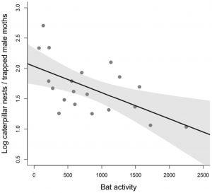Actividad del murciélago sobre el éxito reproductivo de las presas procesionaria