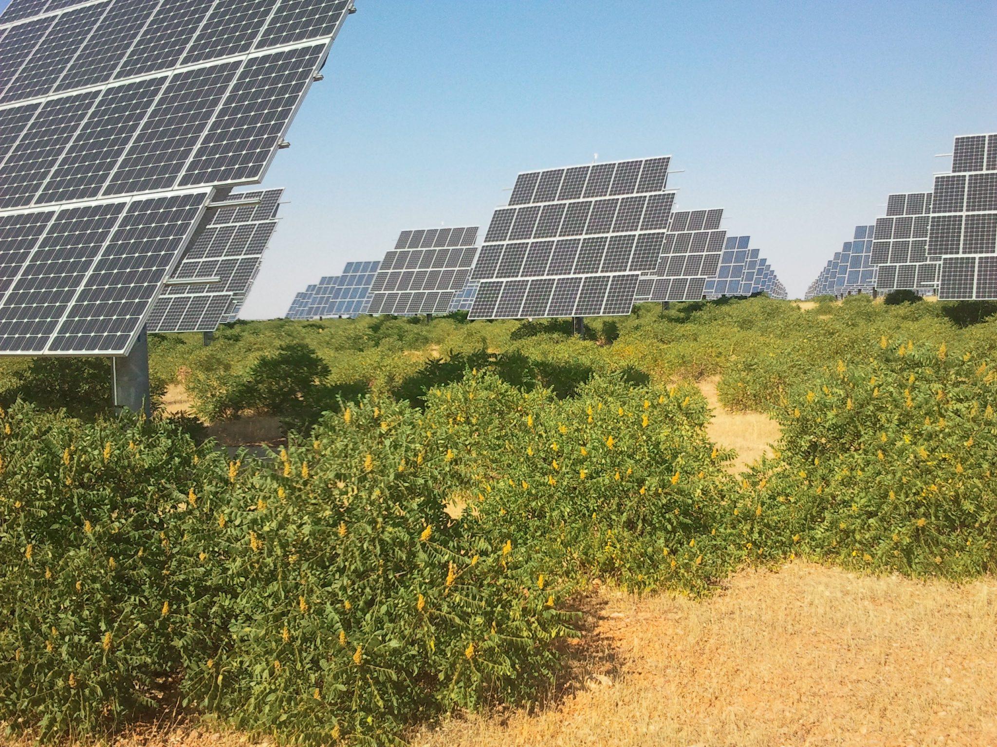 Evaluaci%c3%b3n-ambiental-de-plantas-solares-fotovoltaicas-4