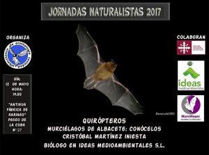 Murciélagos de Albacete 2
