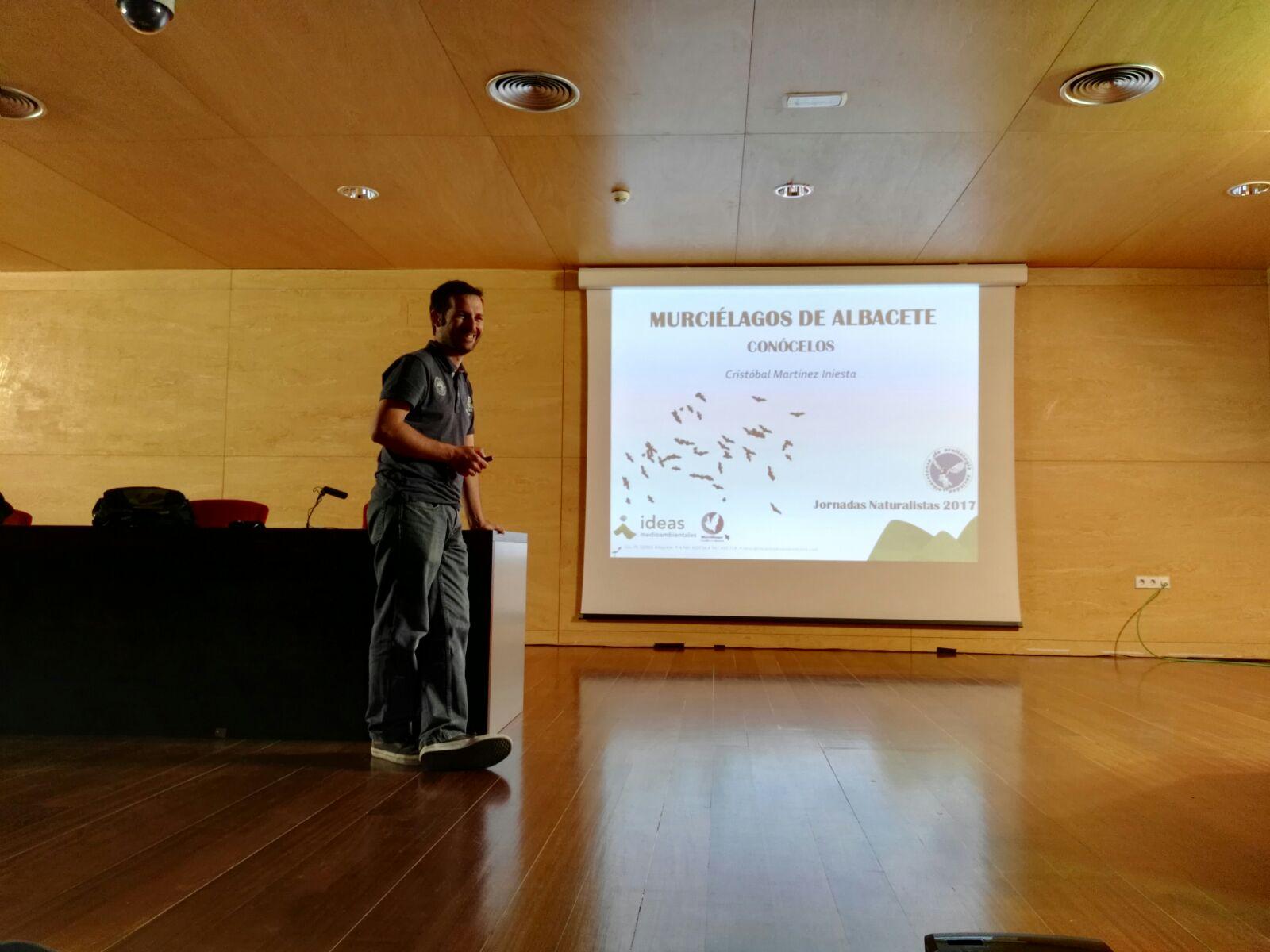 Murcielagos de Albacete