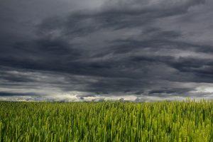 Climatología Estudio Impacto Ambiental