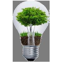 I+D+I ambiental