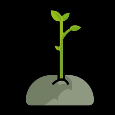 Regeneración ambiental